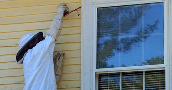 Residential Pest Services in Rochester NH